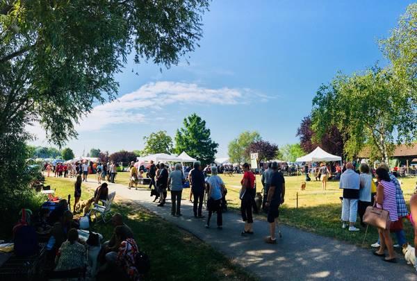 Exposition spécial cockers à Chalette sur Loing le 22 juillet 2018