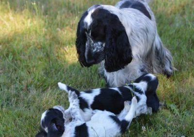 les bébés de Lara et Bob 7